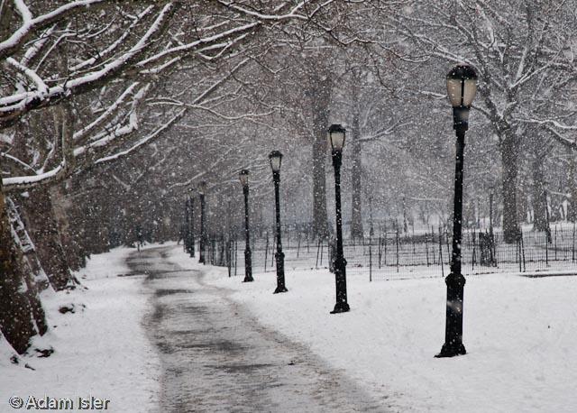 Riverside Park, New York. January, 2009.