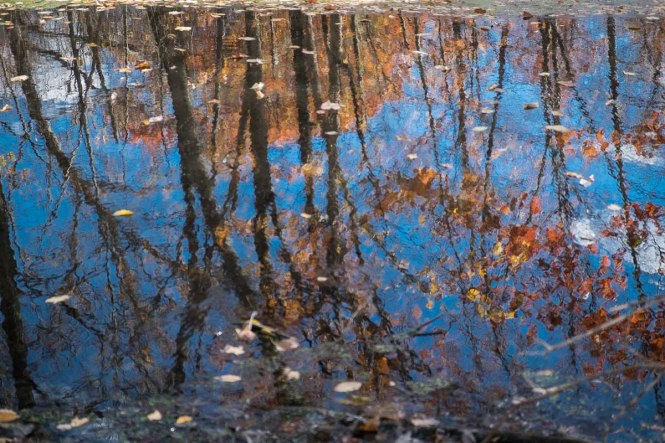 Circleville Park, Wallkill, New York