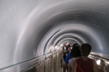Tunnel to the White Water walk