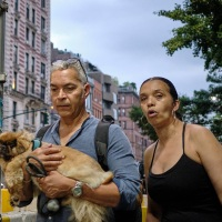 Dog-walking Couple